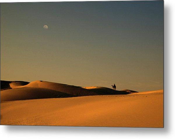 Skn 1117 Camel Ride At 6 Metal Print