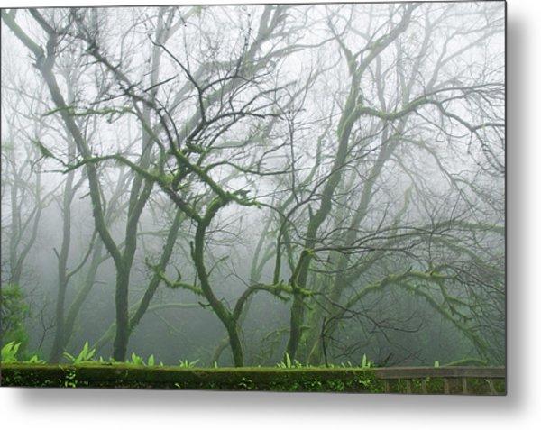 Skn 3720 Monsoon Landscape Metal Print