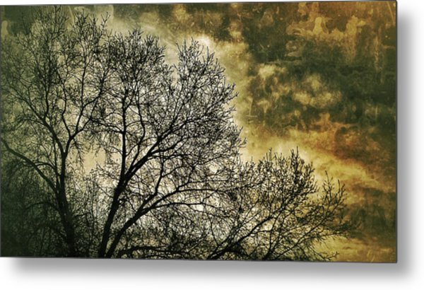 Skyward Metal Print