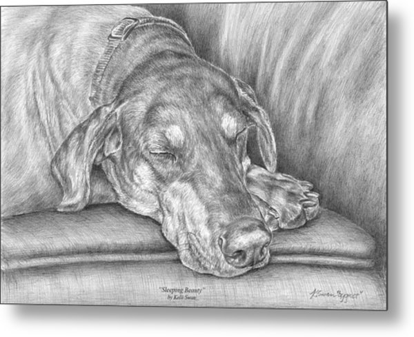 Sleeping Beauty - Doberman Pinscher Dog Art Print Metal Print
