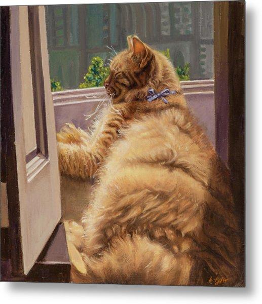 Sleeping Cat Metal Print by Barbara Tyler Ahlfield