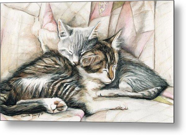 Sleeping Kittens Metal Print by Charlotte Yealey