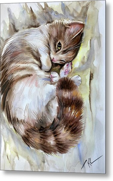 Sleepy Cat 2 Metal Print