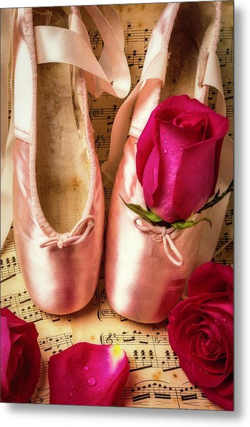 Slippers And Roses Metal Print