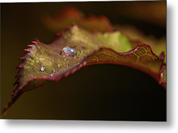 Small Diamonds Metal Print