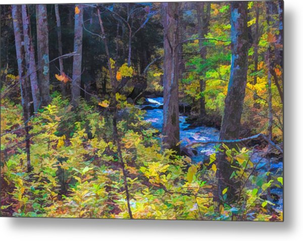 Small Stream Through Autumn Woods Metal Print