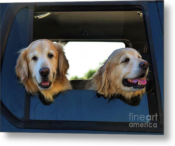 Smiling Dogs Metal Print