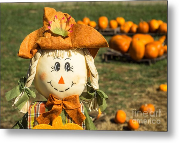 Smiling Scarecrow With Pumpkins Metal Print