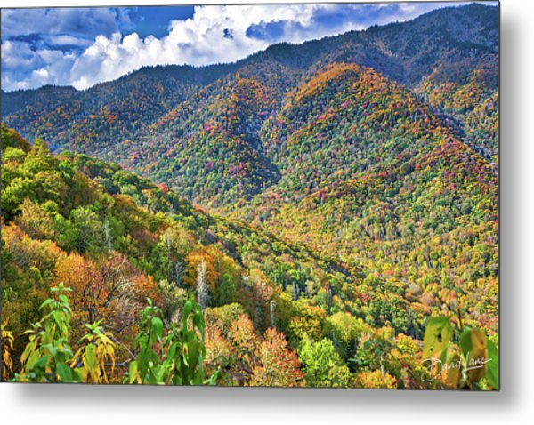Metal Print featuring the photograph Smoky Mountain Glory by David A Lane