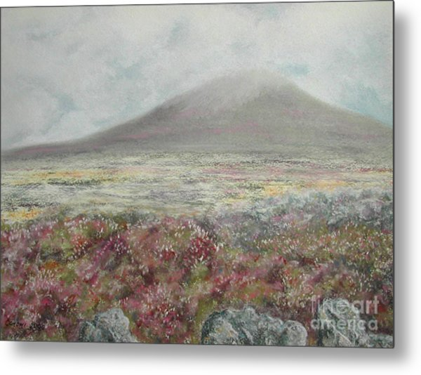 Snaefell Heather Metal Print