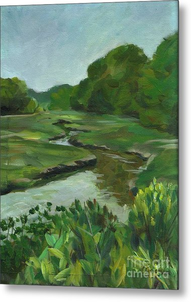 Snake Like Creek I Me Metal Print