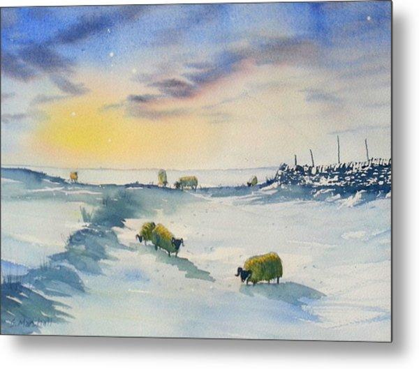 Snow And Sheep On The Moors Metal Print