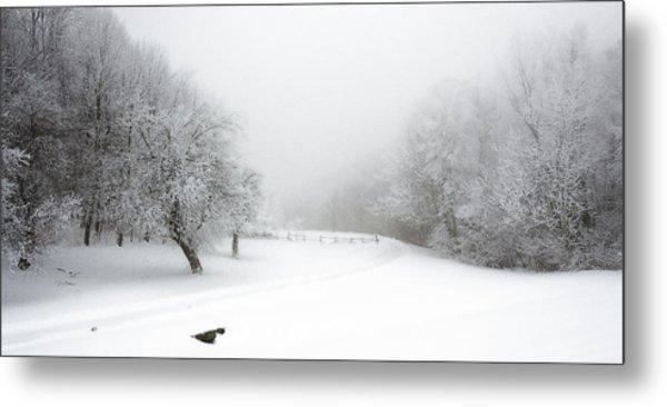 Snow Bound 2014 Metal Print