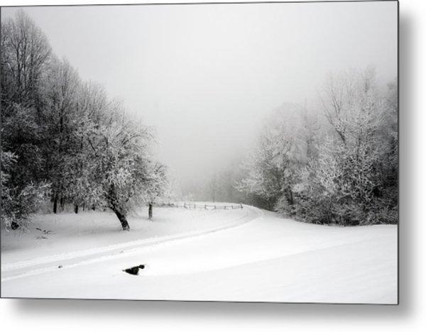 Snow Bound Metal Print
