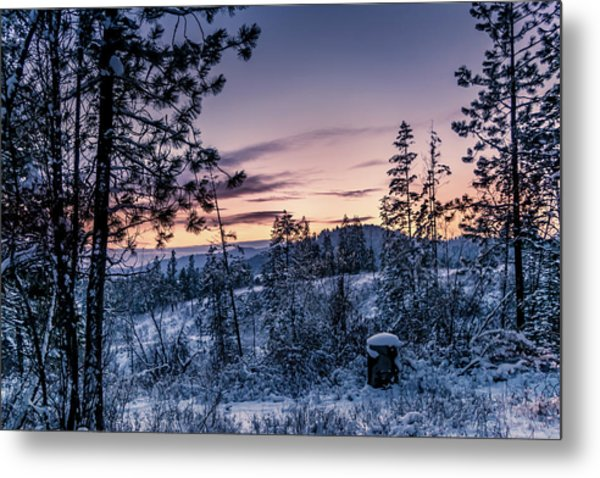 Snow Coved Trees And Sunset Metal Print