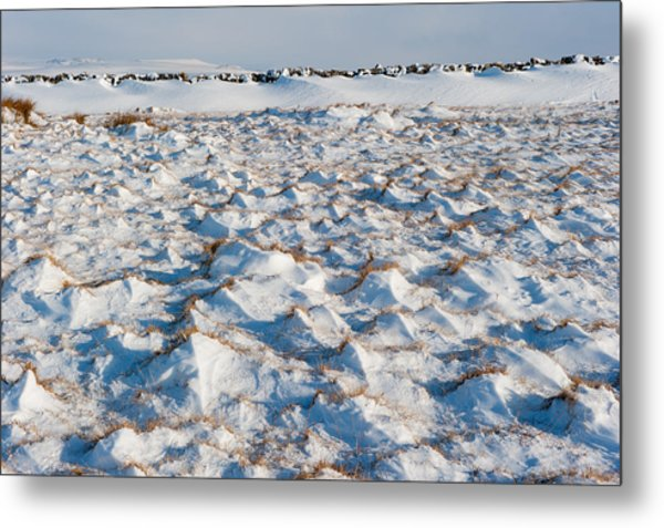 Snow Covered Grass Metal Print