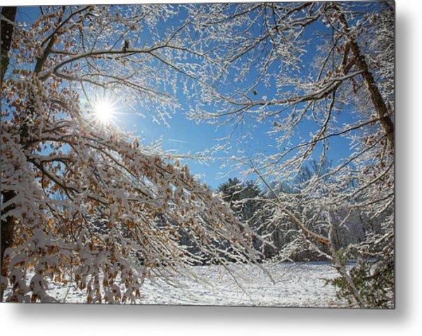 Snow Day Metal Print by Jim Neal
