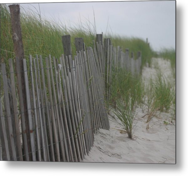 Snow Fence Metal Print by Carla Neufeld