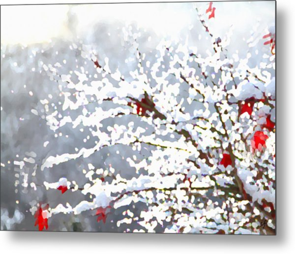 Snow On The Maple Metal Print