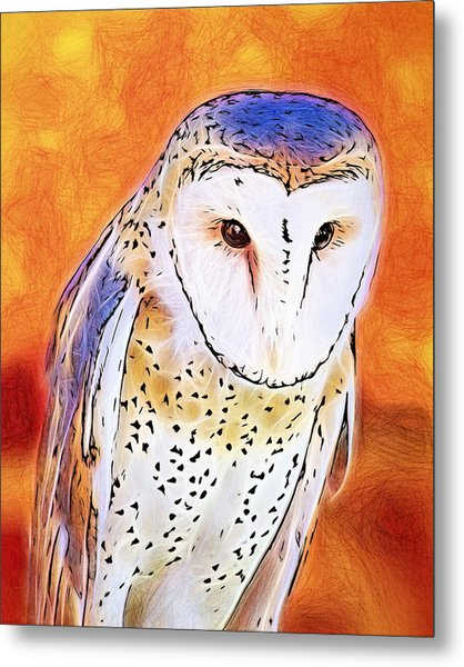 White Face Barn Owl Metal Print
