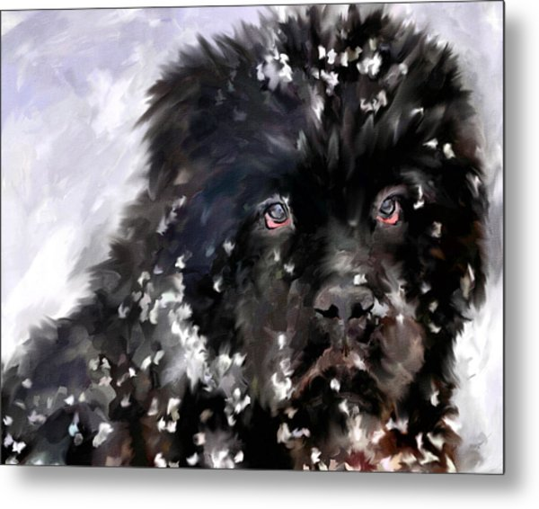 Snow Play Metal Print