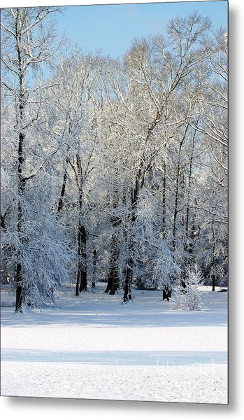 Snow Scene One Metal Print