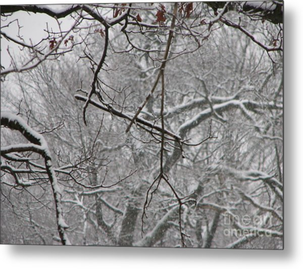 Snow Sprite Dance Metal Print by Roxy Riou
