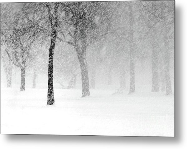 Snow Storm At Starved Rock Metal Print