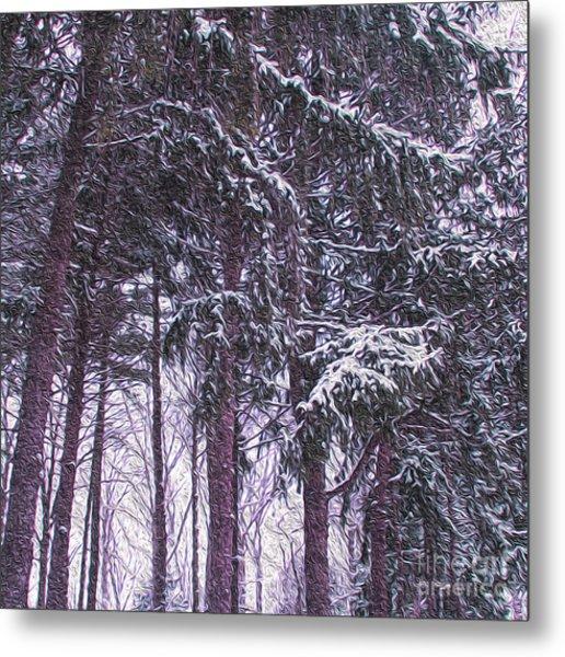 Snow Storm On Pines Metal Print
