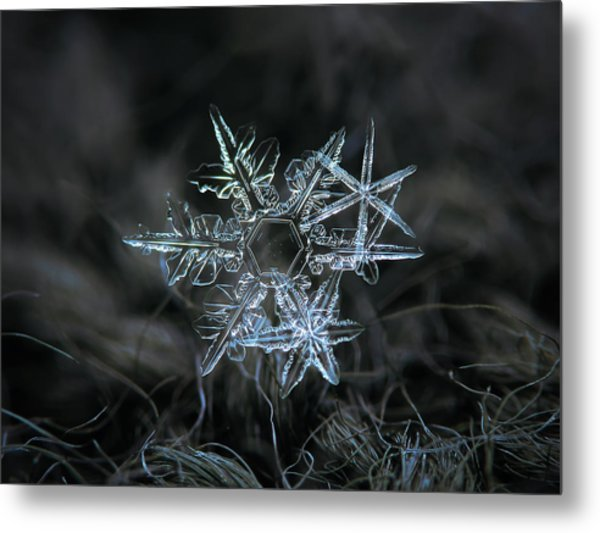 Snowflake Of 19 March 2013 Metal Print