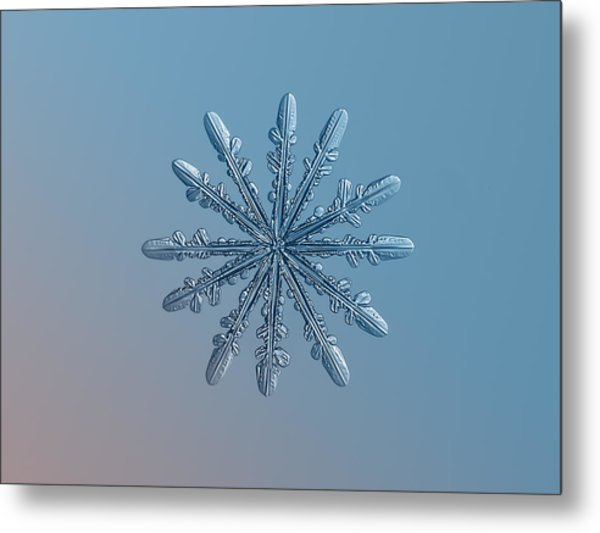 Snowflake Photo - Chrome Metal Print