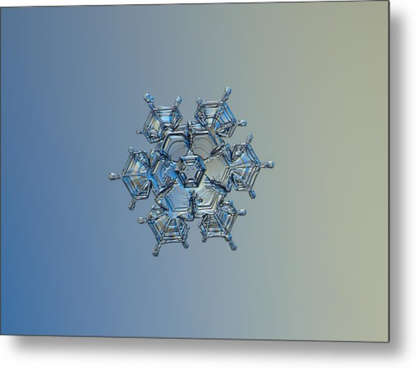 Snowflake Photo - Flying Castle Alternate Metal Print