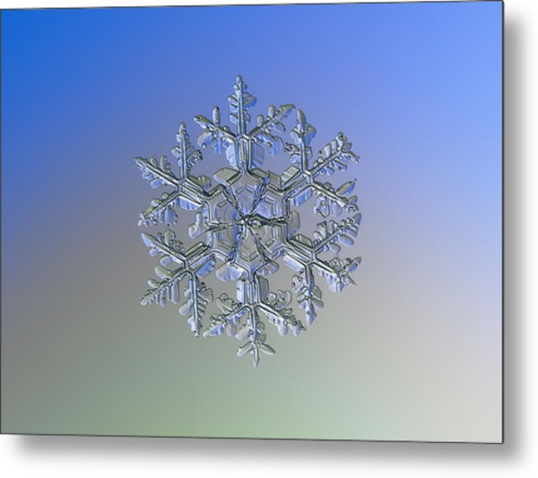 Snowflake Photo - Gardener's Dream Alternate Metal Print