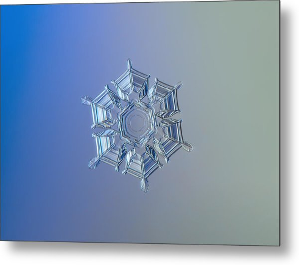 Snowflake Photo - Ice Relief Metal Print