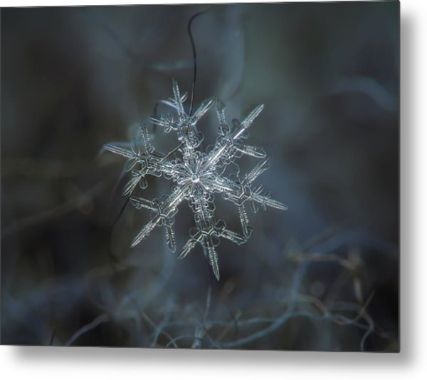 Snowflake Photo - Rigel Metal Print