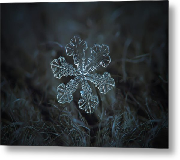 Snowflake Photo - Vega Metal Print
