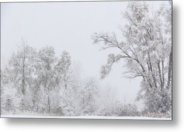 Snowing In A Starbucks Parking Lot Metal Print