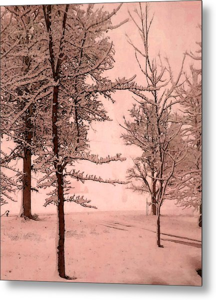 Metal Print featuring the photograph Snowy Day In Rose by Michelle Audas