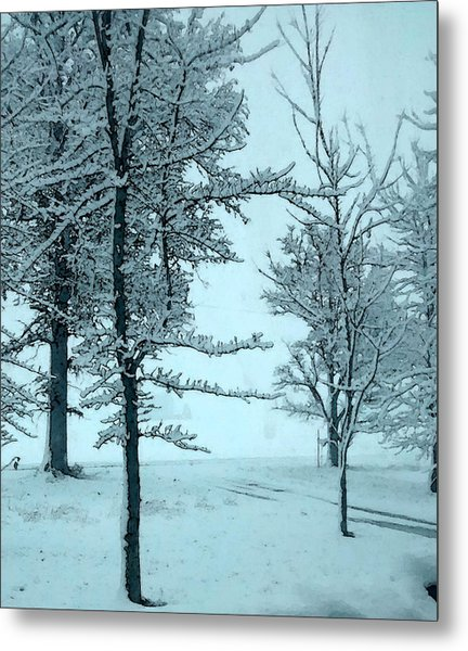 Metal Print featuring the photograph Snowy Day by Michelle Audas