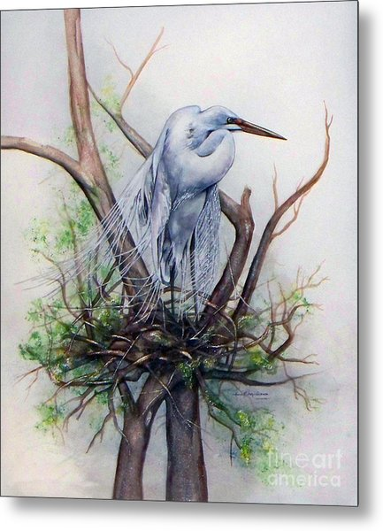 Snowy Egret On Nest Metal Print