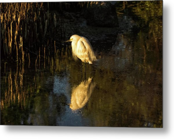 Snowy Kissed By Last Light Metal Print