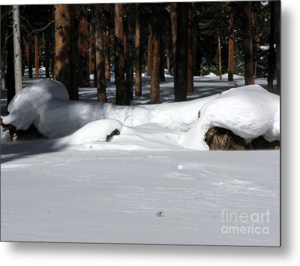 Snowy Log Metal Print by PJ  Cloud