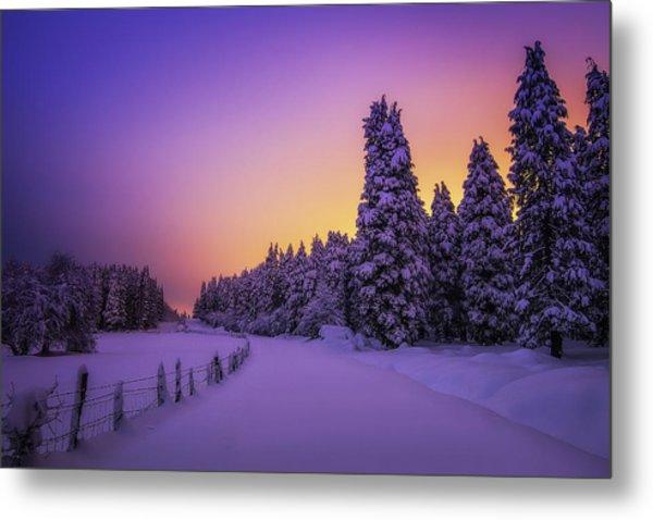 Snowy Night Lights Metal Print