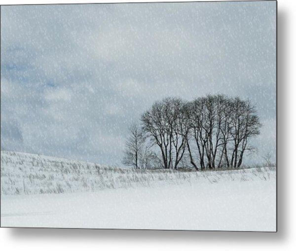Snowy Pasture Metal Print by JAMART Photography
