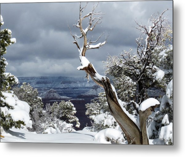 Snowy View Metal Print