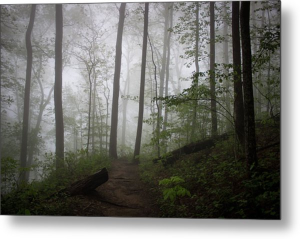 So Foggy Metal Print