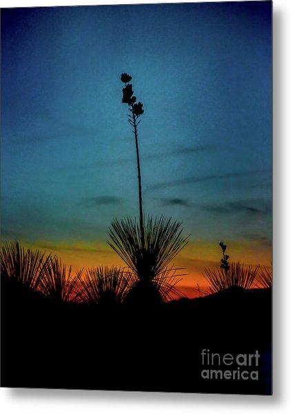 Soaptree Yucca At Sunset Metal Print