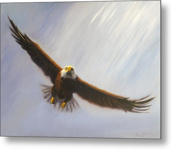 Soaring Eagle Metal Print by Greg Neal