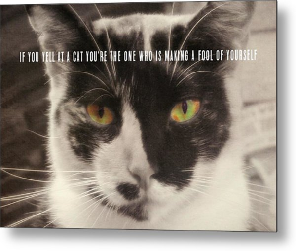 Socks Quote Metal Print by JAMART Photography