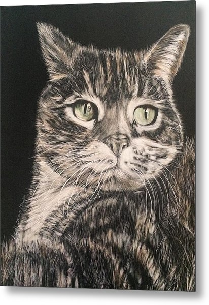 Socks Metal Print